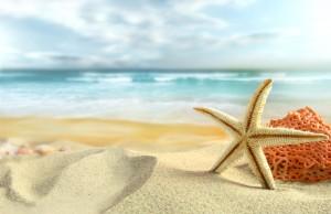 145111__nature-sky-clouds-sea-beach-sand-starfish-shells-summer-nature-sky-clouds-sea-beach_p