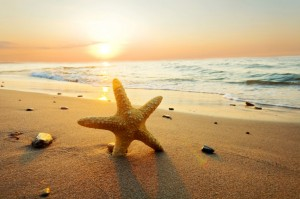 146615__sea-ocean-sunset-beach-sun-sand-starfish-nature-sky-clouds-sunset-summer-beach-sea_p