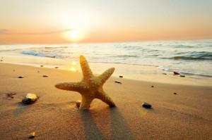 146615__sea-ocean-sunset-beach-sun-sand-starfish-nature-sky-clouds-sunset-summer-beach-sea_p