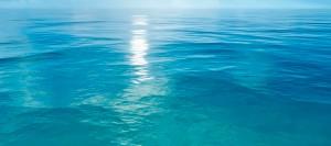 mer-background-3