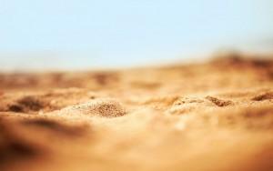 nature-beach-desert-sand-bokeh-macro-1280x800