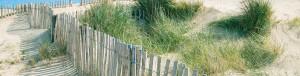 slide-dune-+