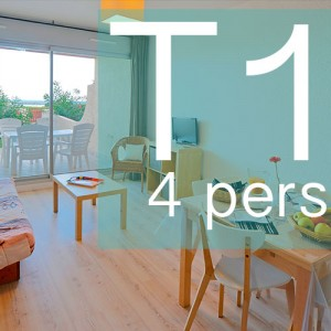 Appartements-T1-bleu