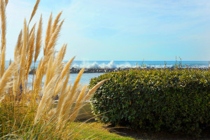 location-appartement-studio-palavas-vue-mer-albatros